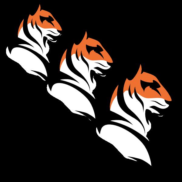 Online Tigers - Data pakket - 3